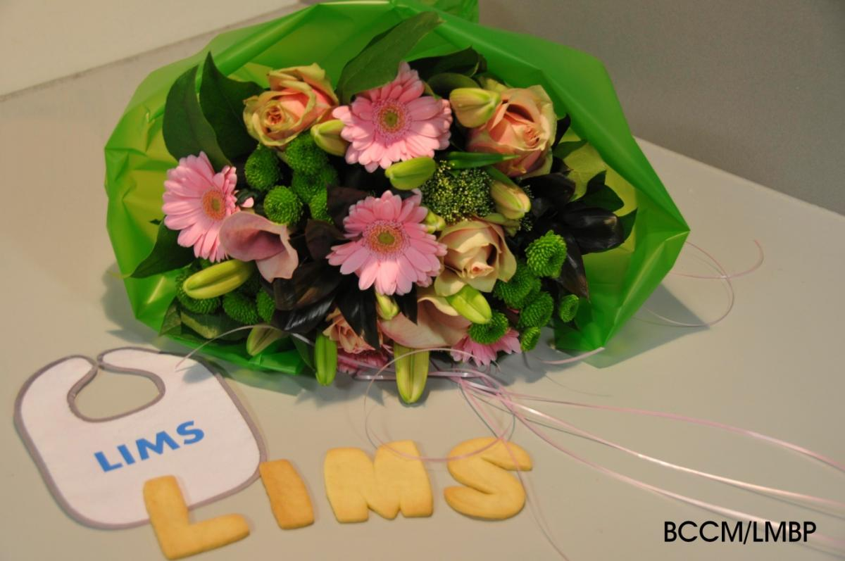 BCCM celebrates the go-live of a common Laboratory Information Management System LIMS